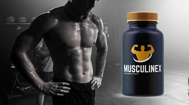 Musculinex Efekty - jak zwiększyć masę mięśniową?