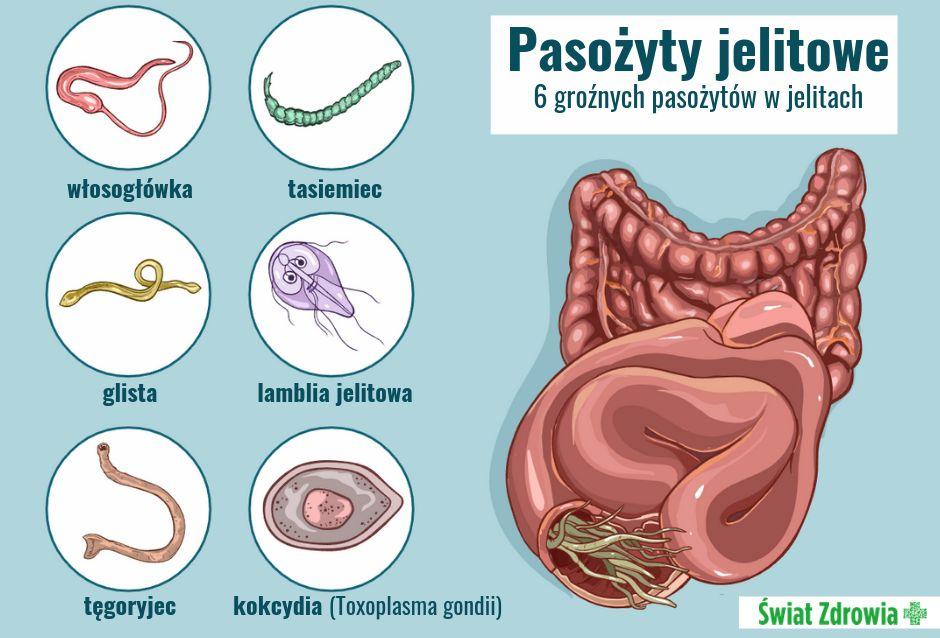 Co powoduje pasożyty jelitowe?