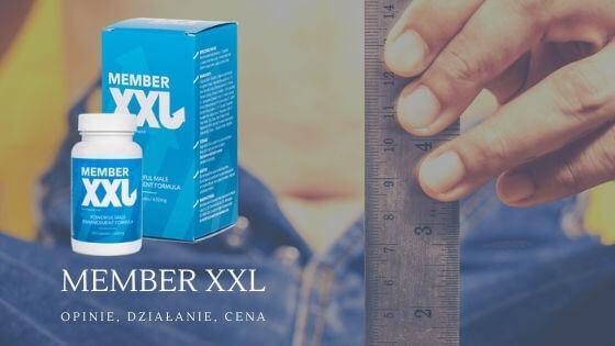Cena i gdzie kupić Member XXL?