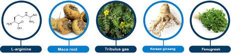 Jakie składniki zawiera Urotrin?